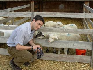 Jesse with sheep