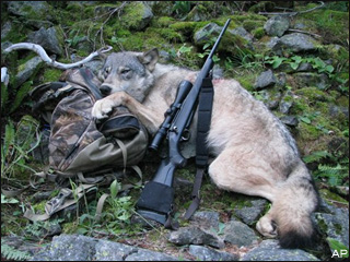 090901_wolf_hunting