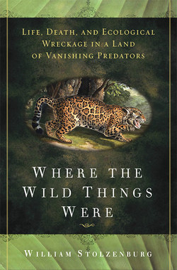 Where_the_wild_things_were_cover