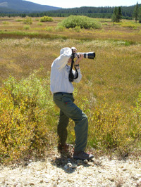 One of the wolf tour participants taking photos in Idaho's wolf country. (Jesse Tiberlake)