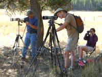 Wolf watchers setting up their cameras and scopes at dusk (Jesse Timberlake)